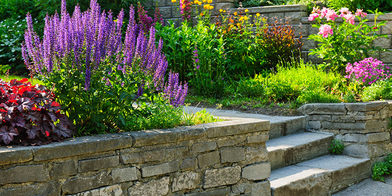 Gartengestaltung von GaLabau Schäfer